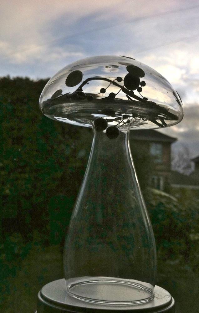 glass toadstool