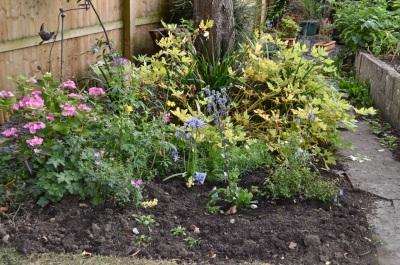 garden 3 August 2014 - 24